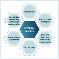 Dimensions of effective practice honeycomb