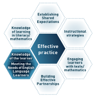 Knowledge of English language learners honeycomb image.