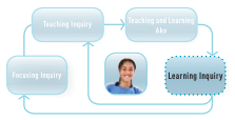 Learning inquiry icon.