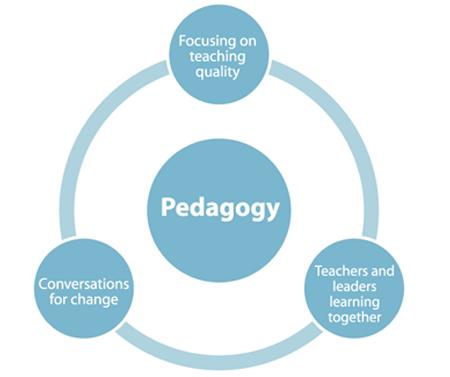 objectives of pedagogy