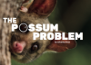 The Possum Problem