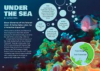 Under the Sea article.